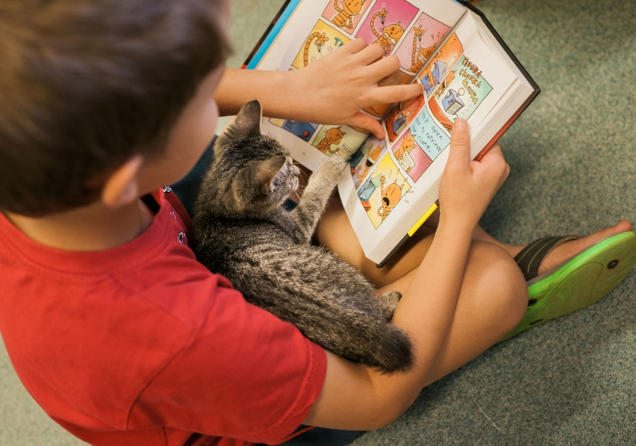 Boy Reading Book with Kitten in Lap