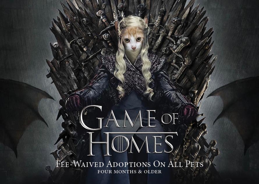 game of homes inspired by game of thrones adoption promotion