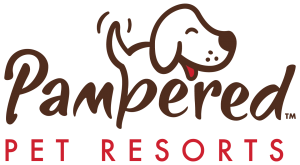 Pampered Pet Resorts