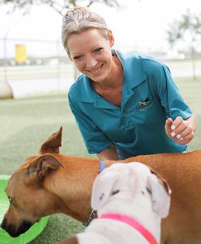 Bekah Coffing | Dog Behaviorist at Humane Society Naples