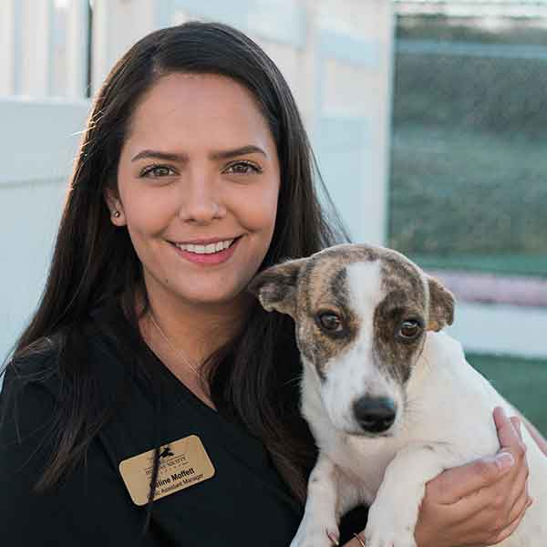 Celine Moffett Veterinary Staff Humane Society Naples Collier County No Kill Animal Shelter