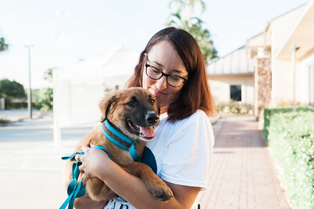 Clear the Shelter Event | Humane Society Naples Non-Profit Animal Shelter Collier County
