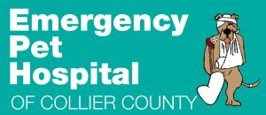 Emergency Pet Hospital of Collier County