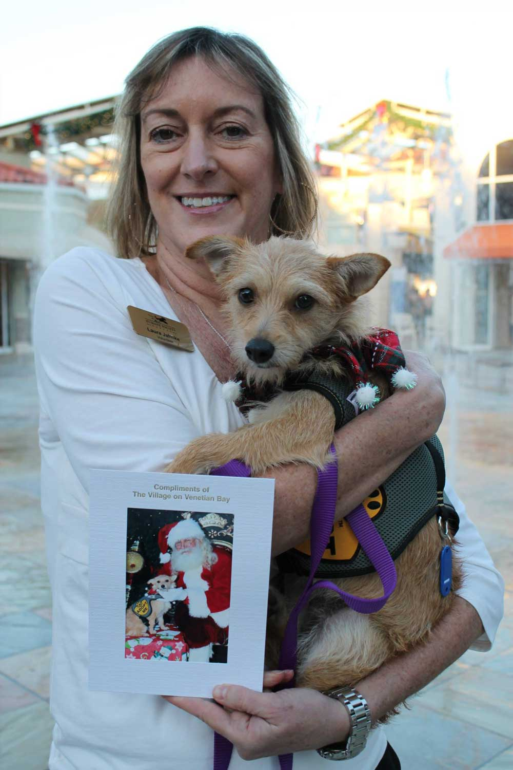 Paws Around Town Santa Paws | Humane Society Naples: Non-Profit, No-Kill Animal Shelter Collier County