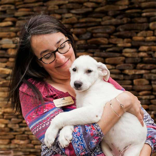 Sarah Baeckler Davis, the Executive Director of the Humane Society Naples | No Kill Shelter in Collier County Naples Florida