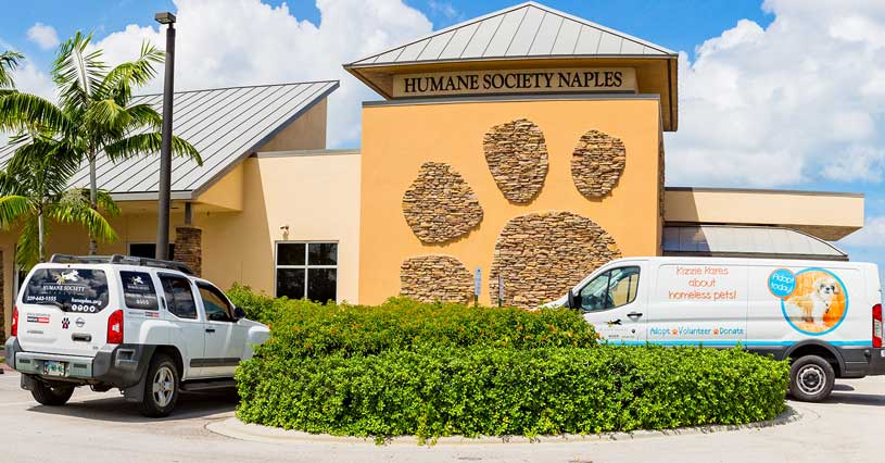 Vehicle Donations at the Humane Society Naples Adoption Center | More Ways to Give to the Humane Society Naples Collier County No-Kill Animal Shelter